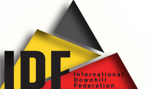 IDFBannerLogoformap