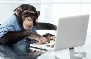 monkey computer